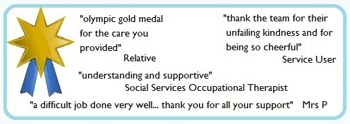 gold medal award for care provision